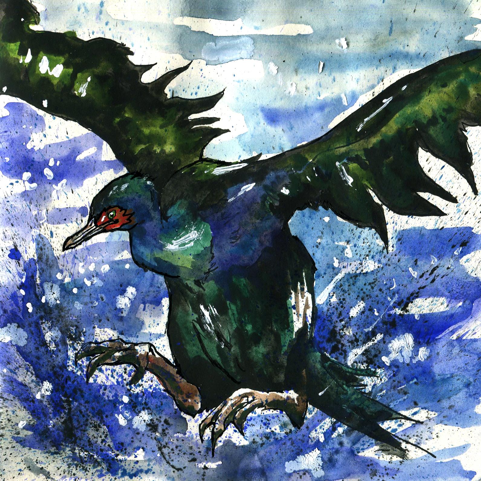 379. Pelagic Cormorant