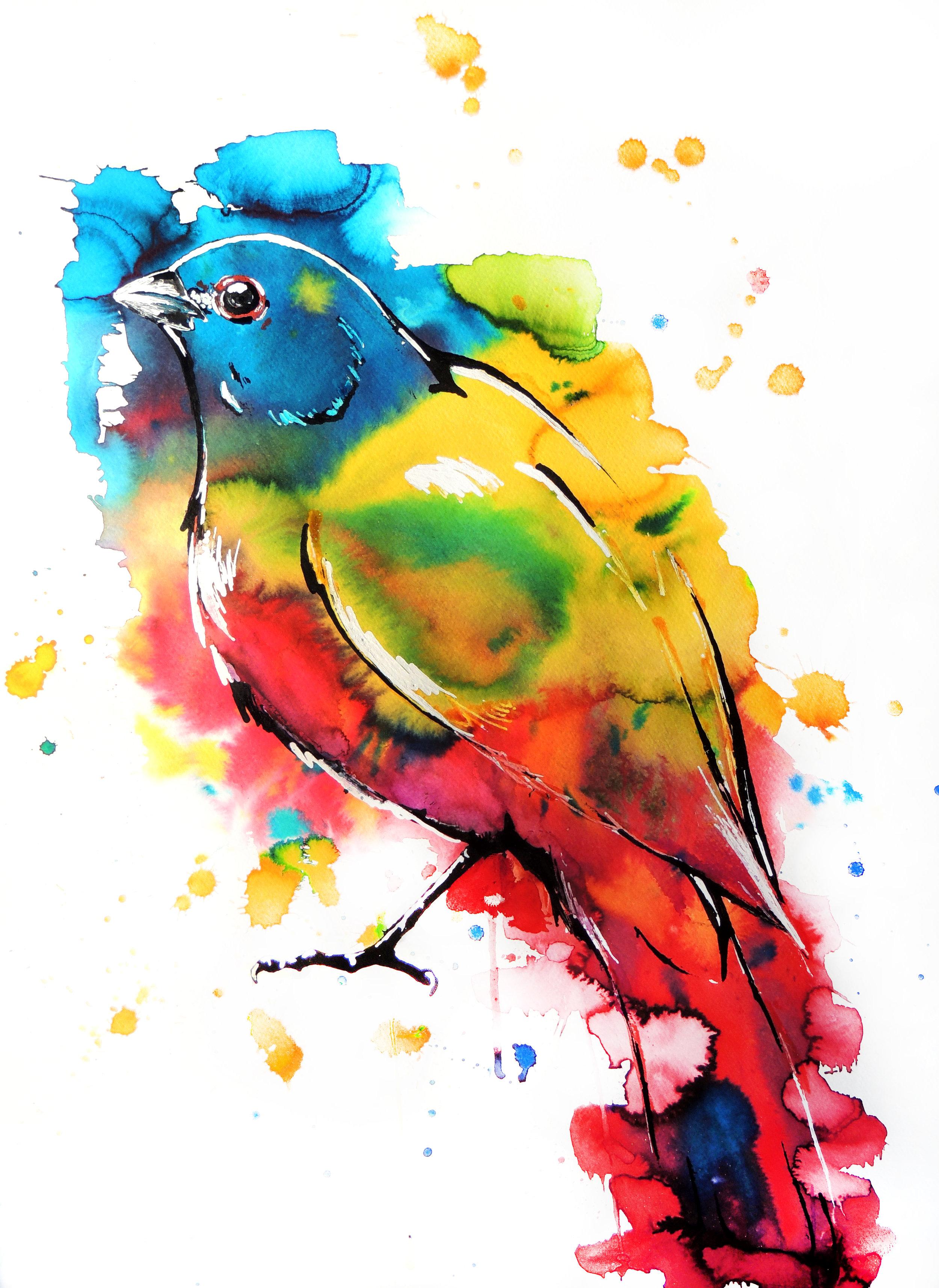 The Artist's Bird