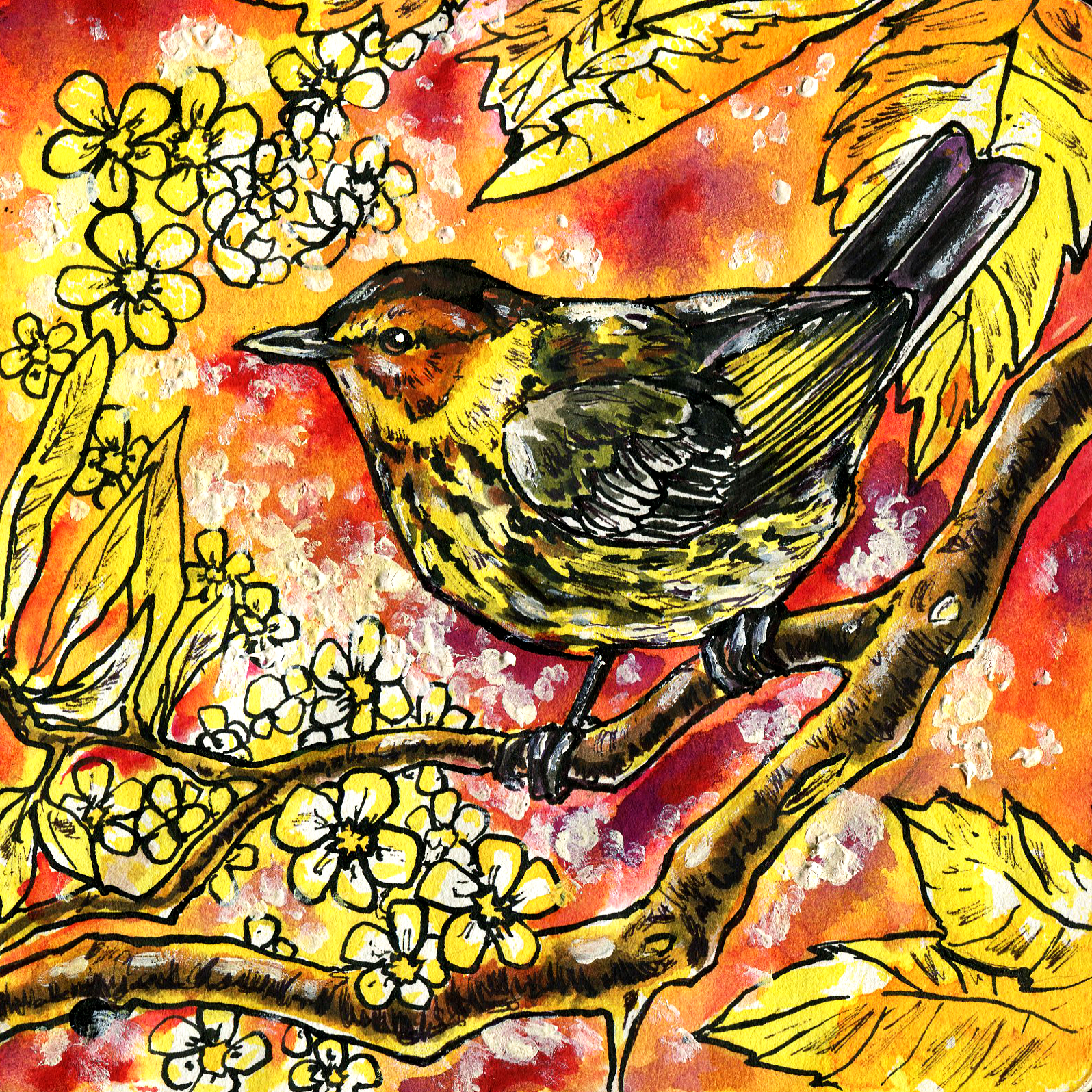395. Cape May Warbler