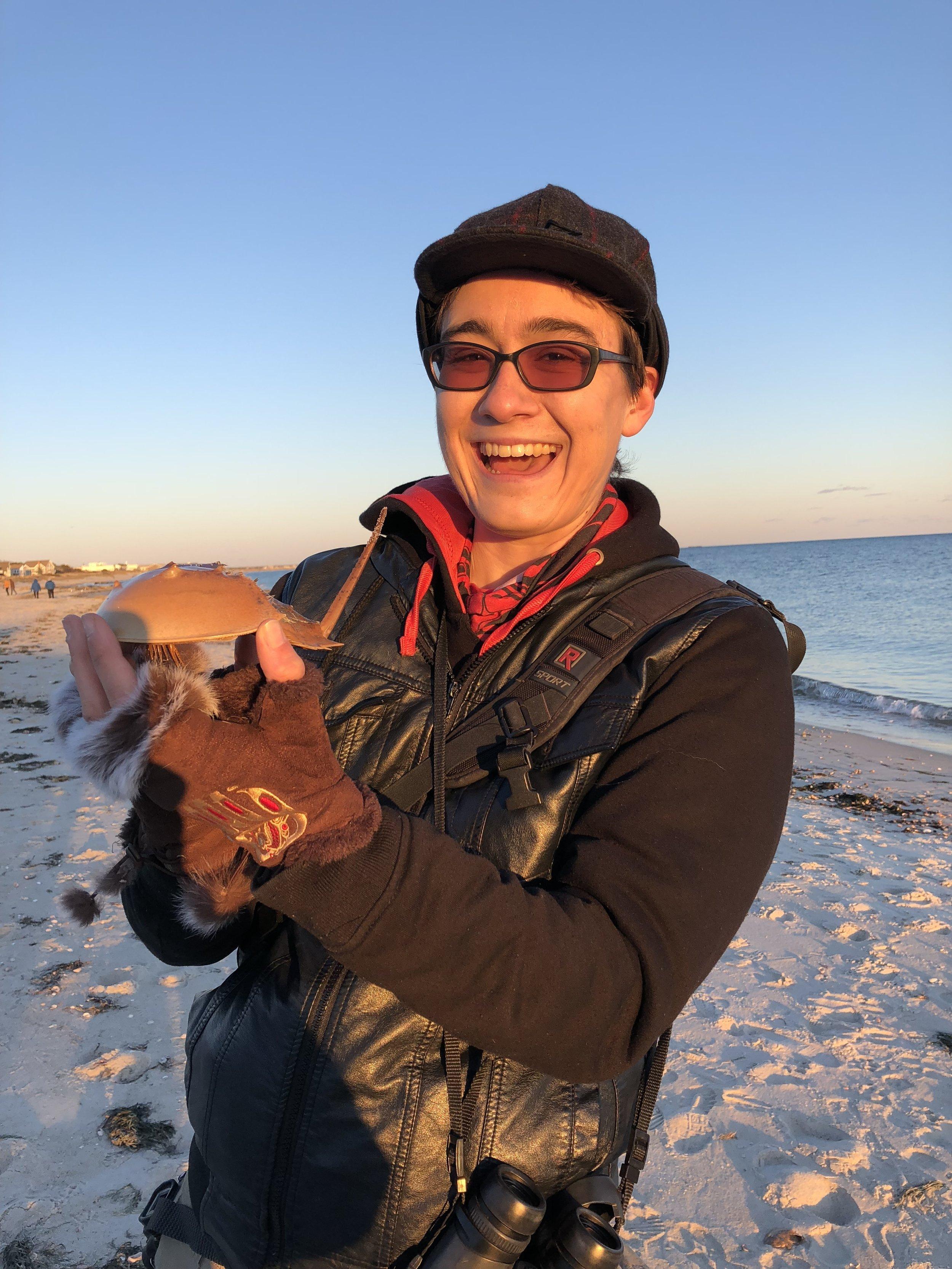 My new Horseshoe Crab shell friend!
