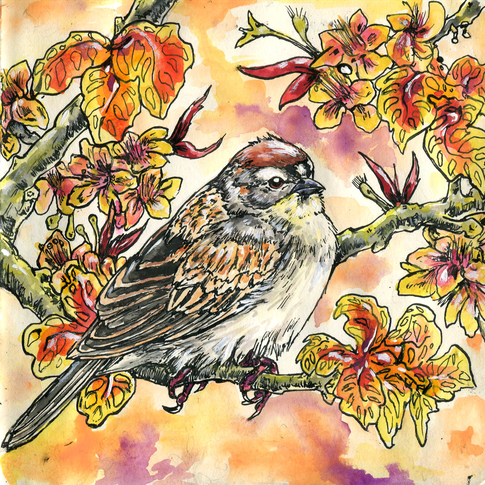 140. Chipping Sparrow