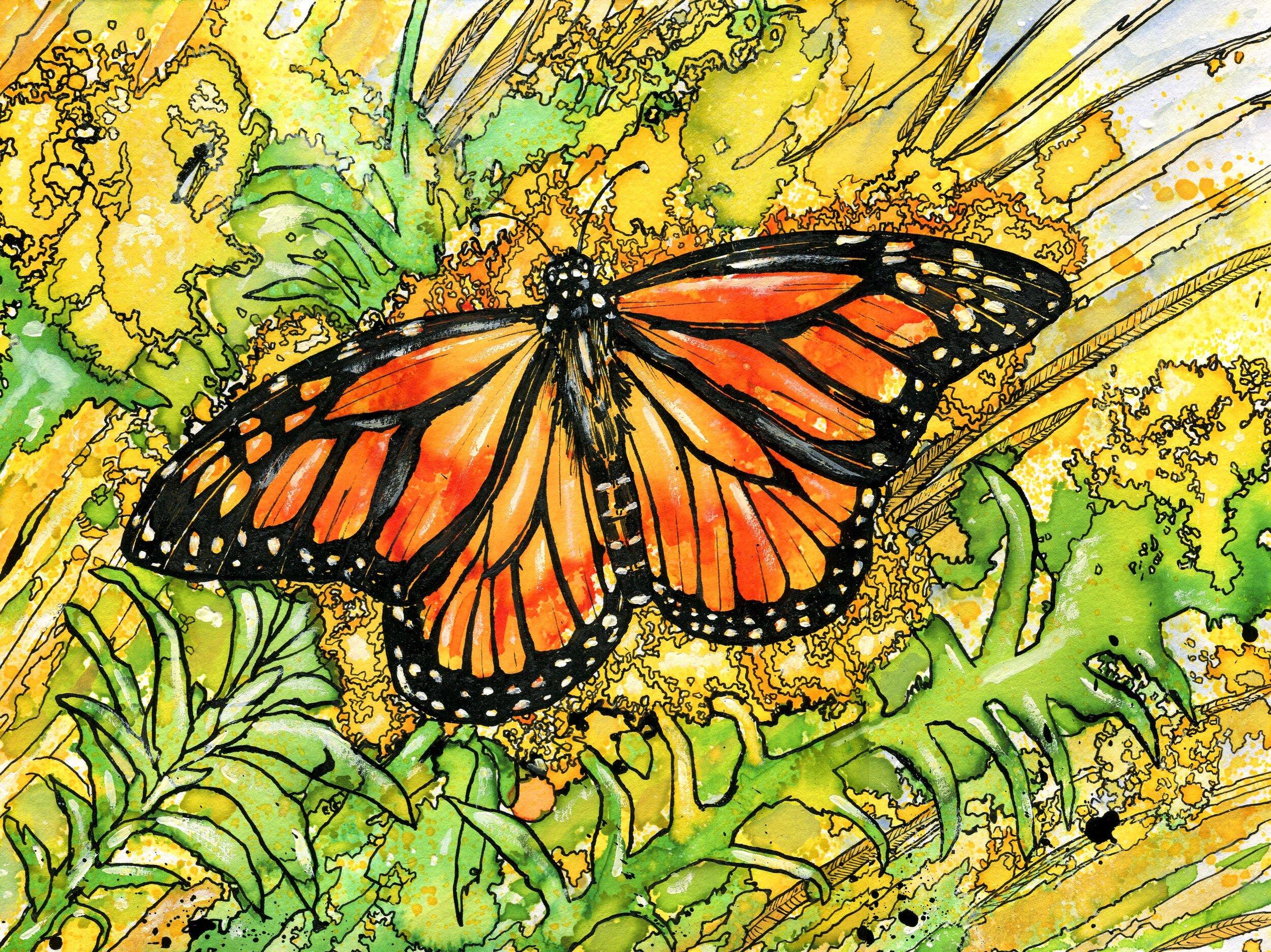 A Golden Monarch