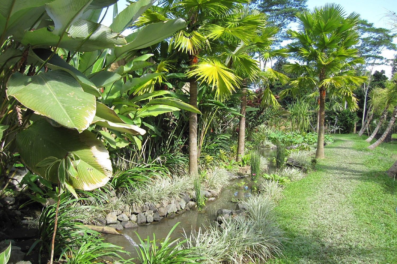 JdB-Garden6.jpg