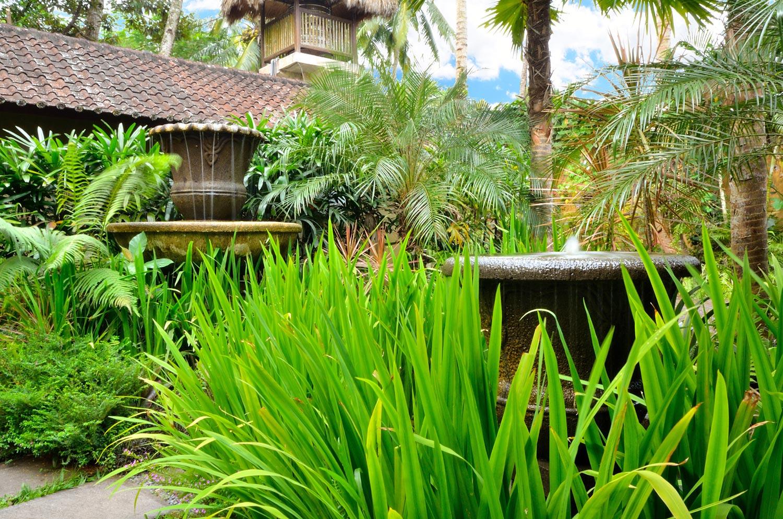 JdB-Garden12.jpg