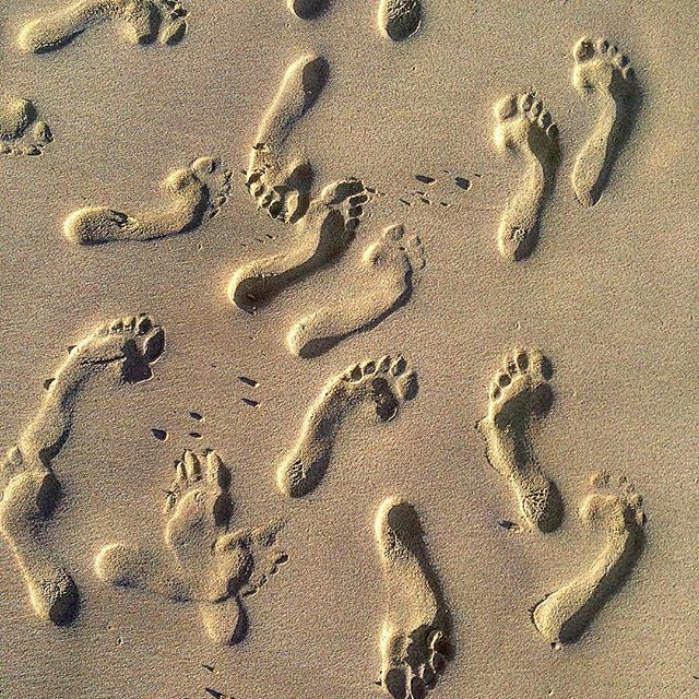 Follow the footprints- we must be getting closer