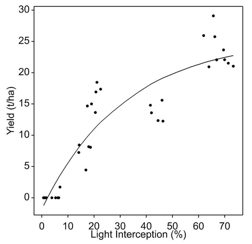 Relationship between light interception and yield in tonnes per hectare in Kensington pride, showing maximum yields are reached at about 68% light interception.