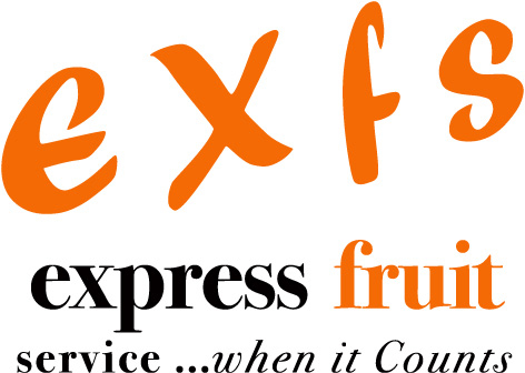 EXFS Company Logo.jpg