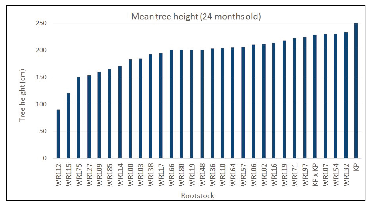 Figure 4.  Average tree height of scions NMBP-1243 and NMBP-4069 at two years old, grown on a range of rootstocks being evaluated on Walkamin Research Station