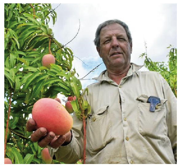 Grower Derek Foley was profiled in the Bundaberg NewsMail (photo courtesy of the NewsMail).