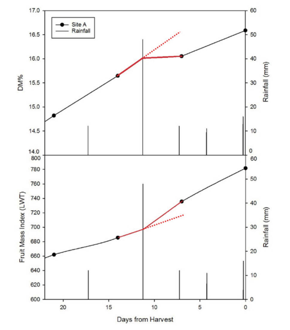 Figure 3. An example from 2016: a 50 mm rain event resulted in a decrease in the rate of DM increase in the fruit, and an increase in the size of the fruit.