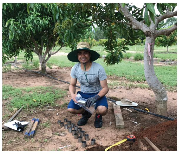 QUT PhD student Raj Pandeya with soil tubes (for incubation) and soil pits (for characterisation) under mango trees, at Coastal Plains Research Station (Darwin Region).