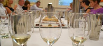 Wine tasting social
