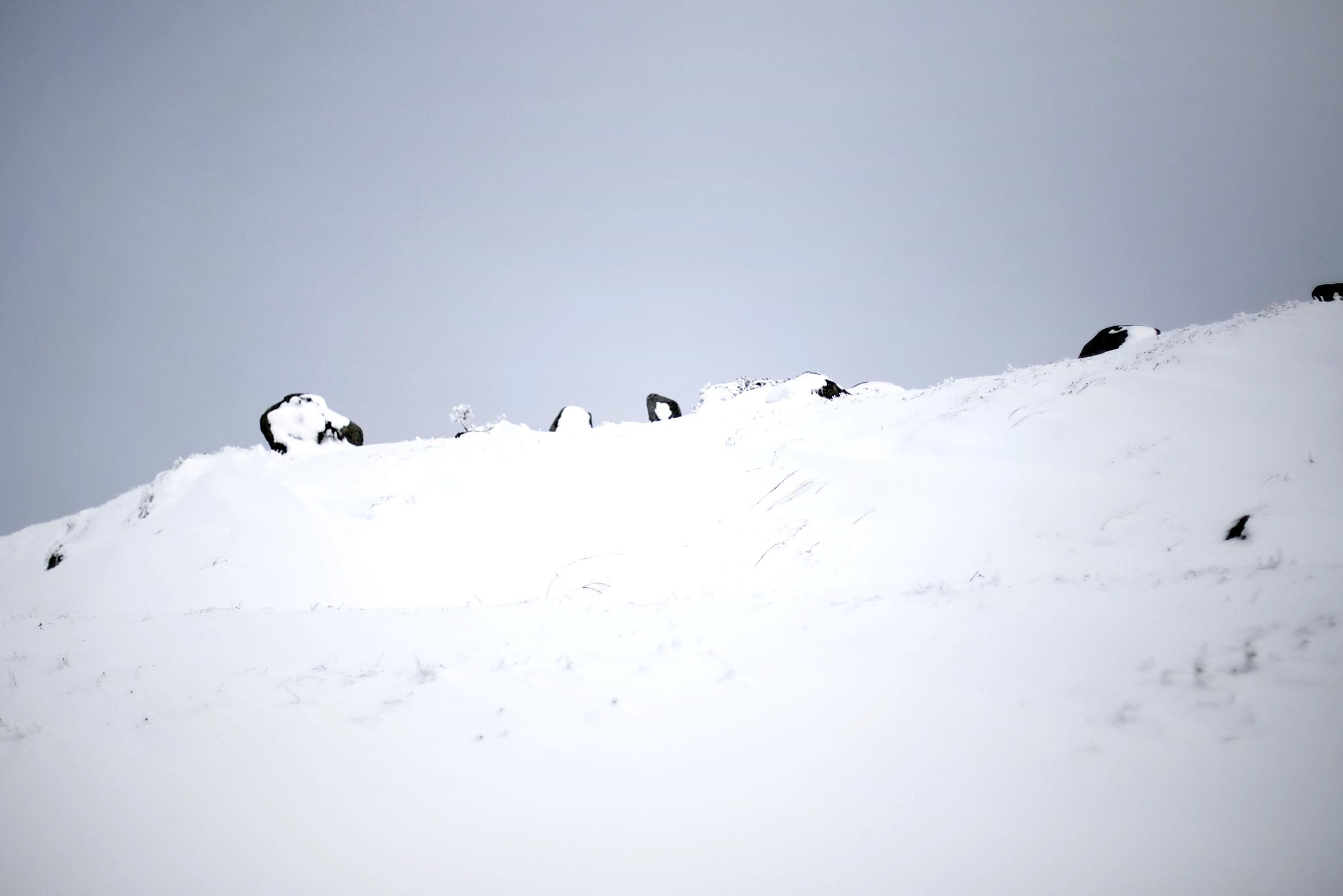 MB snow rocks.jpg