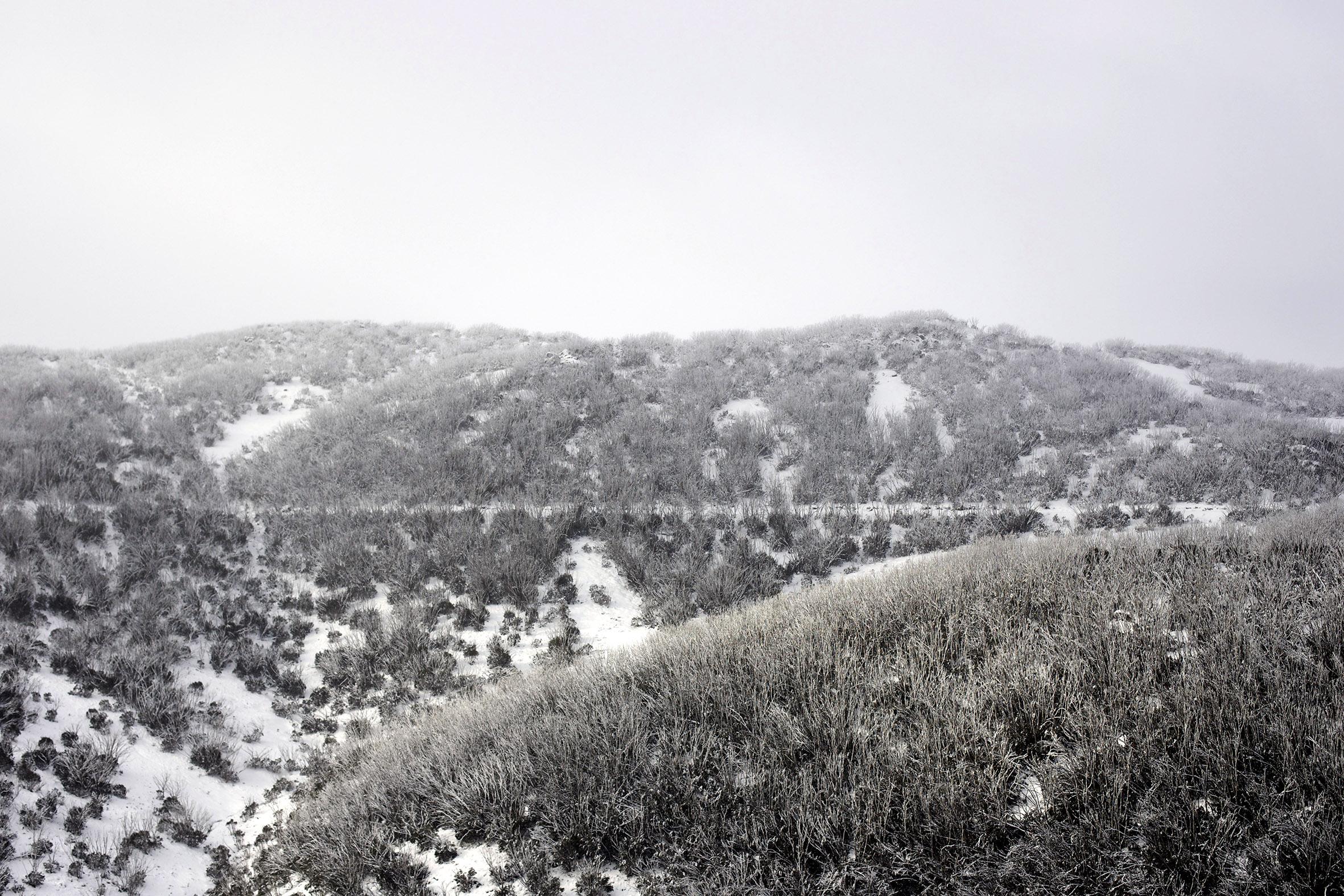 MB snow scape 2.jpg