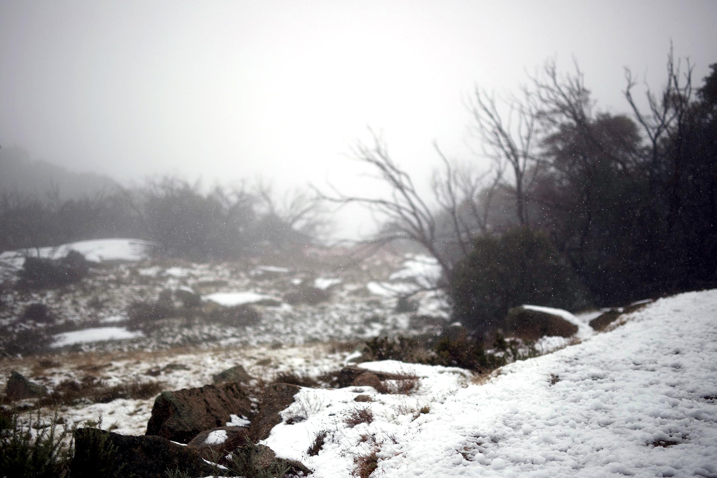 MB snow.jpg