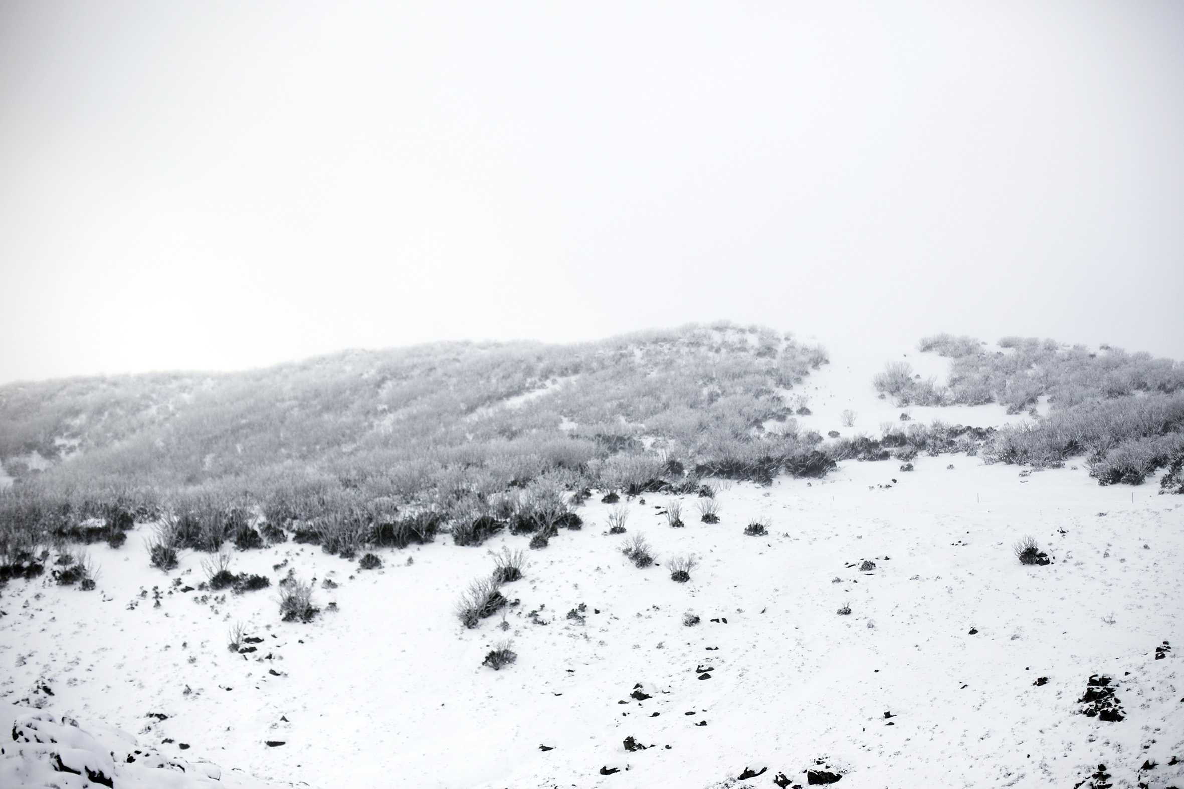 MB snow scape.jpg