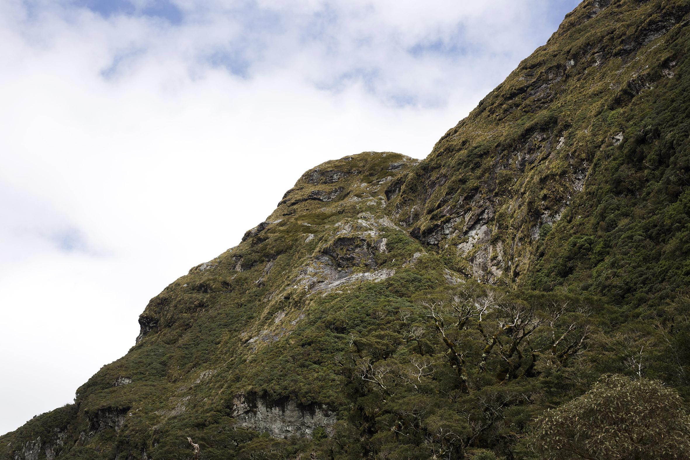 NZ Mountain side.jpg