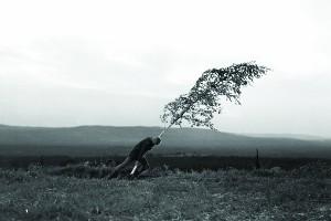 The Virgin Spring (1960) Dir. Ingmar Bergman