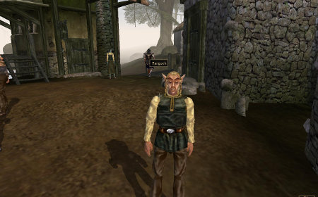 Elder Scrolls III: Morrowind  (2002) by Bethesda Game Studios
