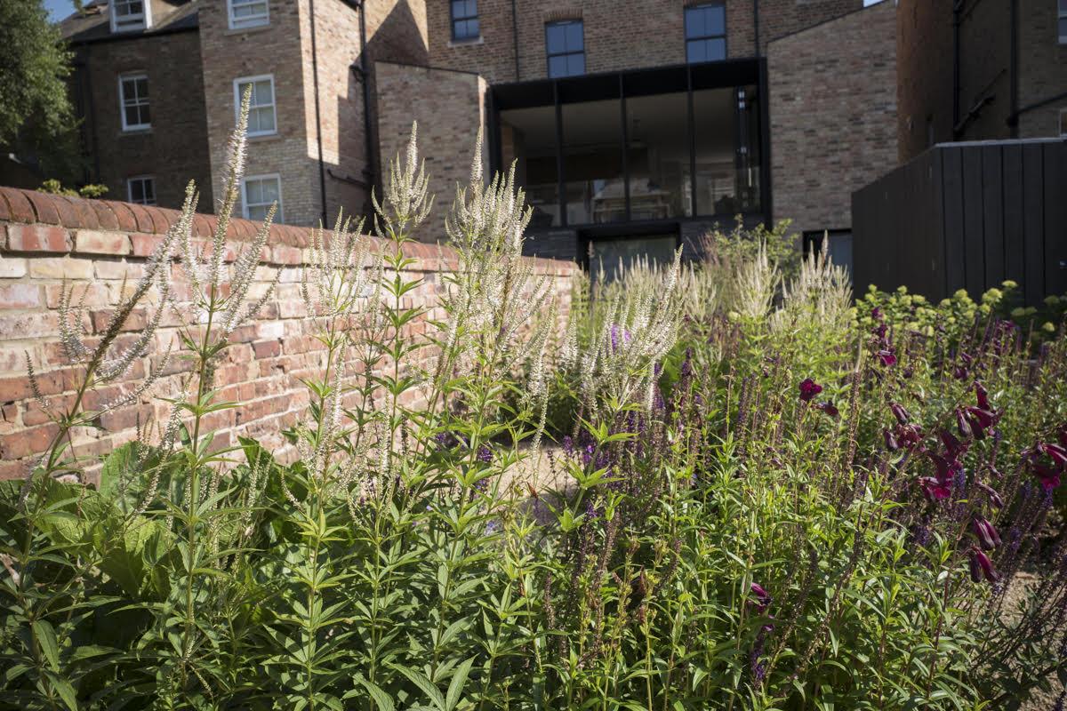 Two gardens 5.jpg