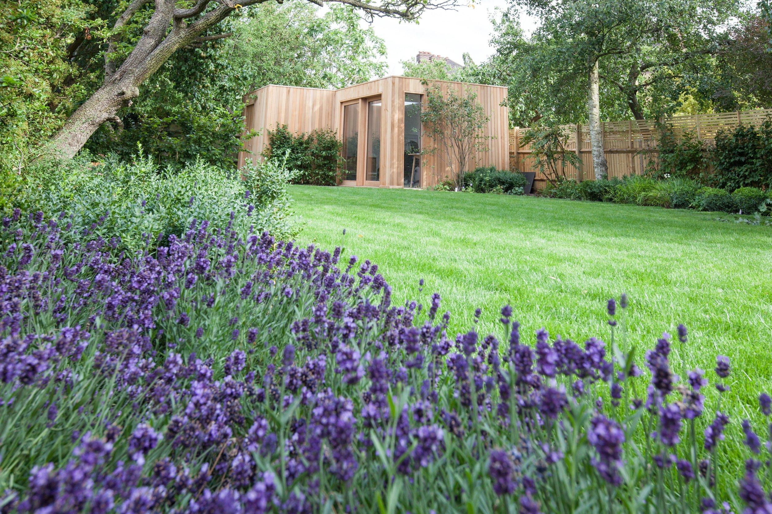 Dulwich Village garden 1