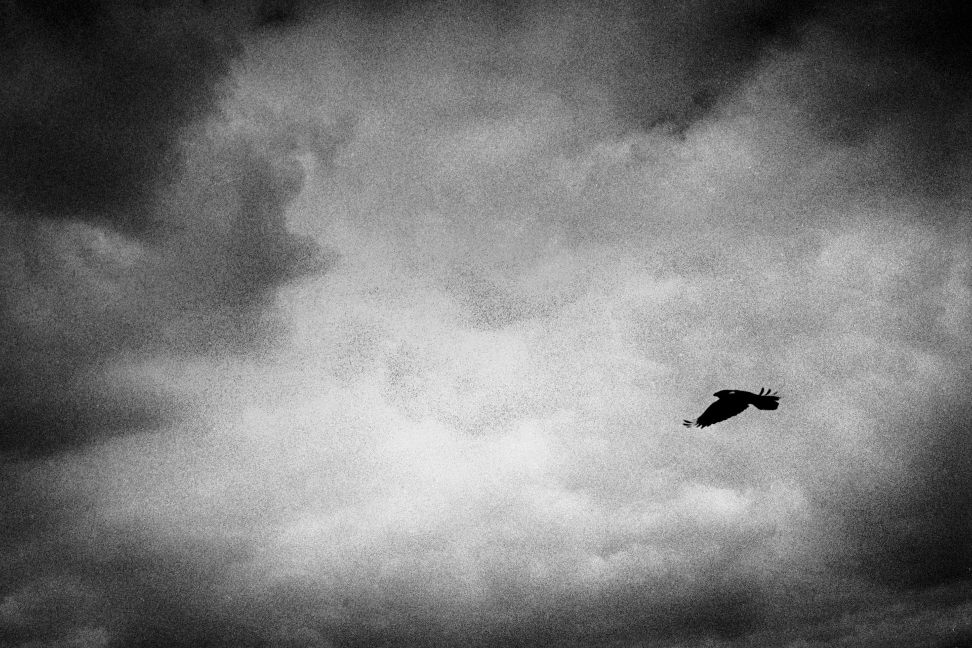 A poetic journey-48.jpg