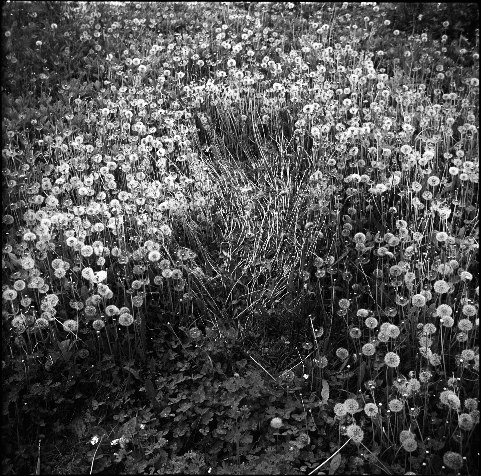 A poetic journey-57.jpg