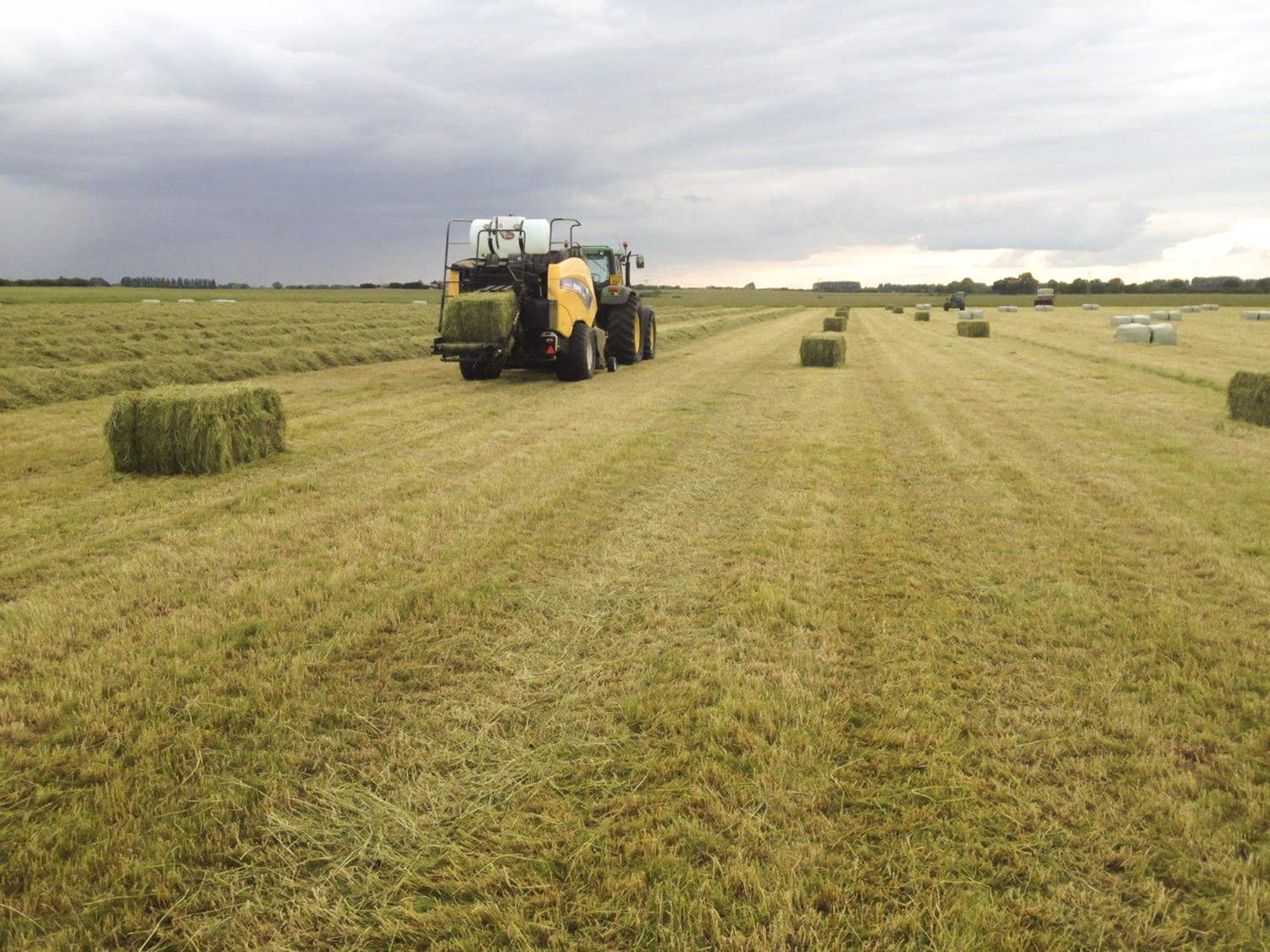 big-baling-haylage-top-grass-haylage-2_edit.jpg