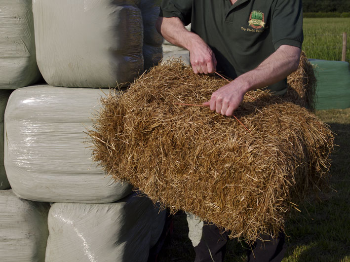 bale-top-grass-haylage-top-grass-haylage.jpg