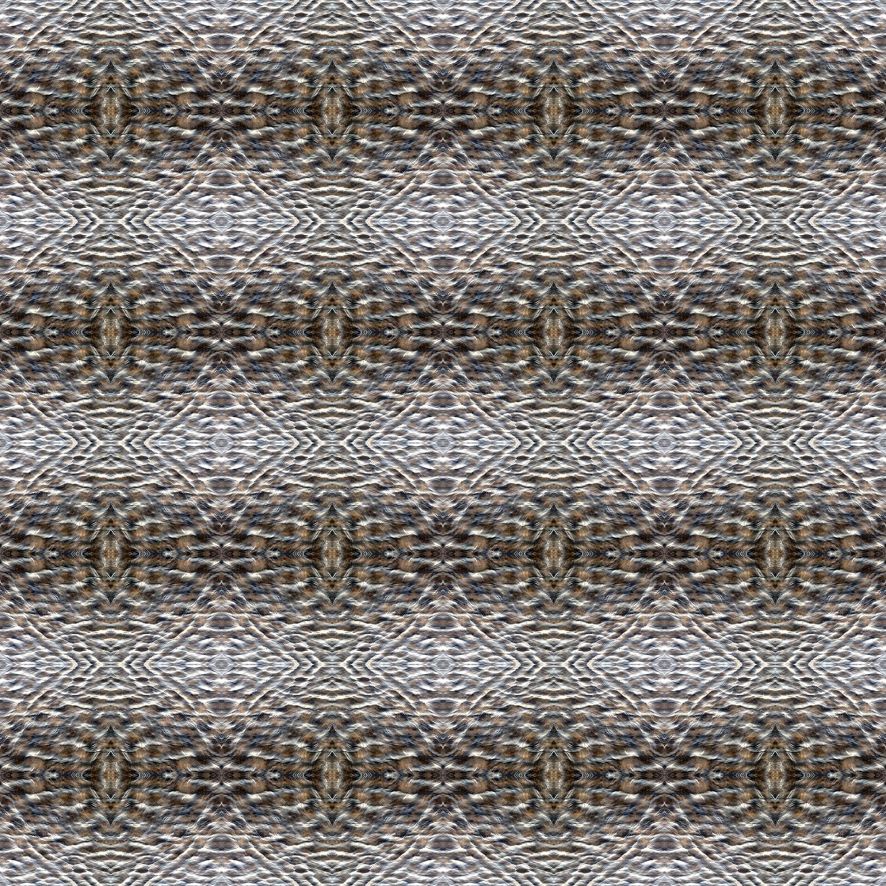 IMG_0215.square.pattern.jpg