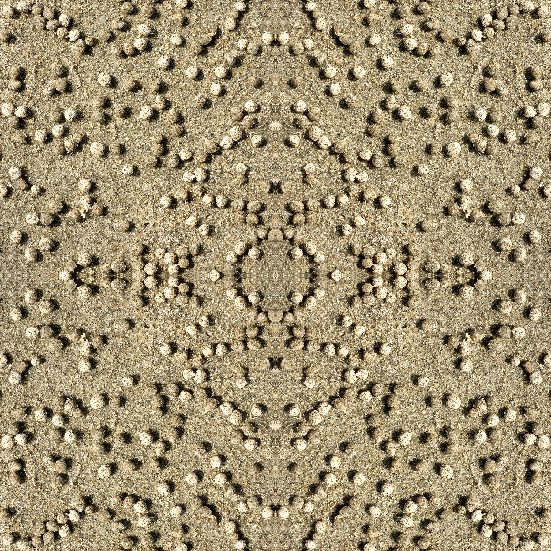 IMG_0240.square.jpg
