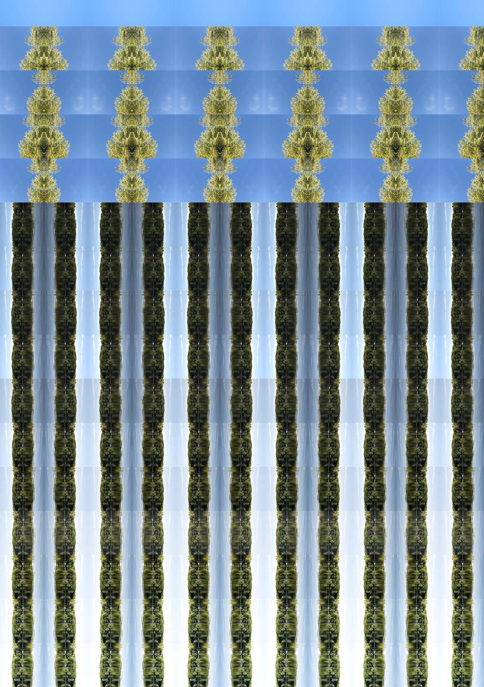 vertical-4.jpg