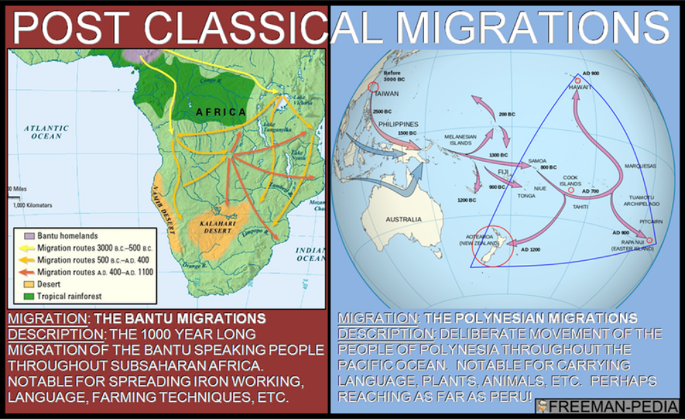B. Some migrations had a significant environmental impact, including the migraiton of Bantu speaking peoples who facilitated transmission of iron technologies and agricultural techniques in Sub-Saharan Africa, as well as the maritime migrations of the Polynesian peoples who cultivated transplanted foods and domesticated animals as they moved to new islands.