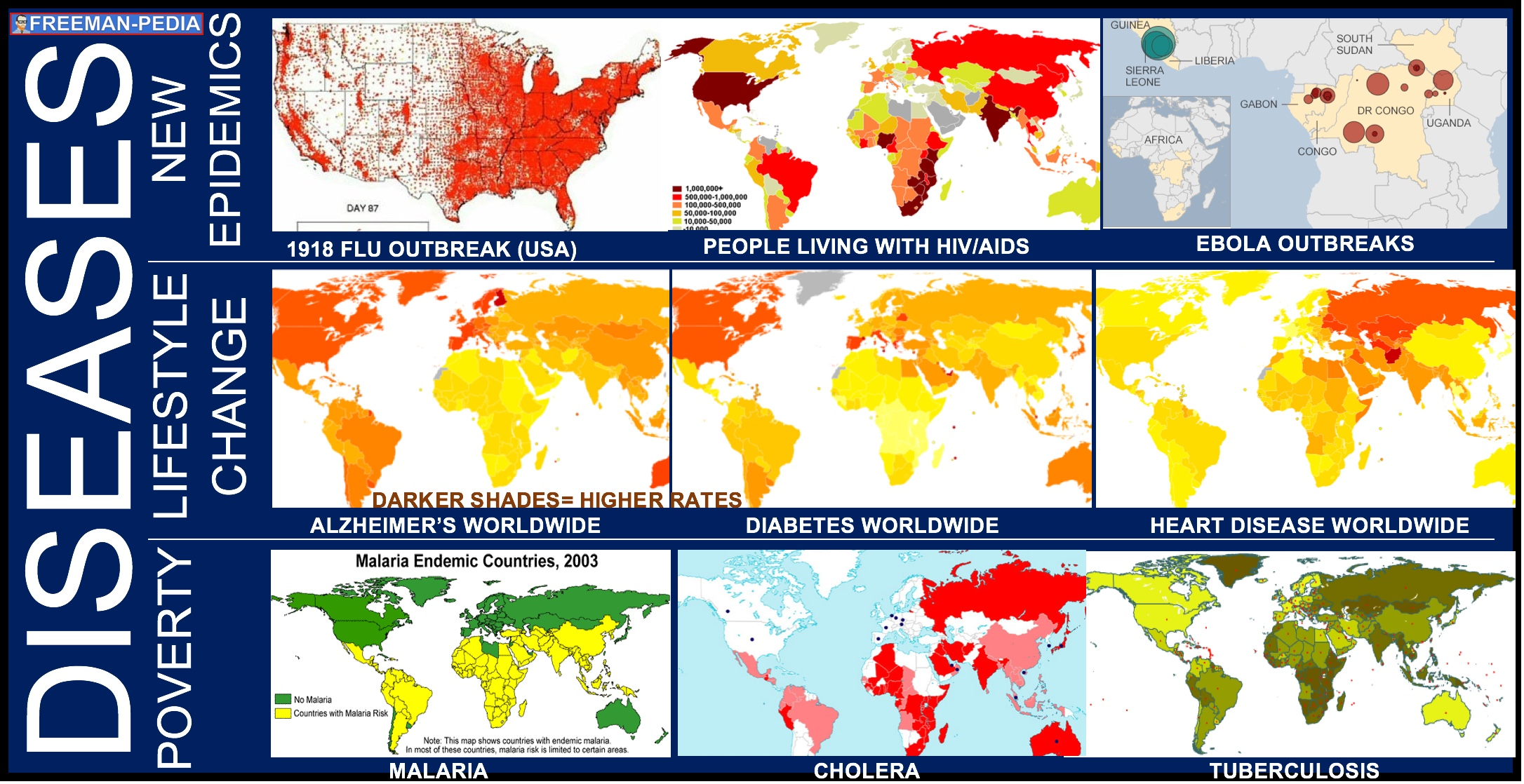 A. Diseases associated with poverty ( Malaria ,  Cholera ,  Tuberculosis )  persisted, while other  diseases emerged as new epidemics ( 1918 Flu ,  HIV/AIDS ,  Ebola )  and threats to human survival. In addition,  changing lifestyles ( Diabetes ,  Heart Disease ,  Alzheimer's Disease ) and increased longevity led to higher incidence of certain diseases .