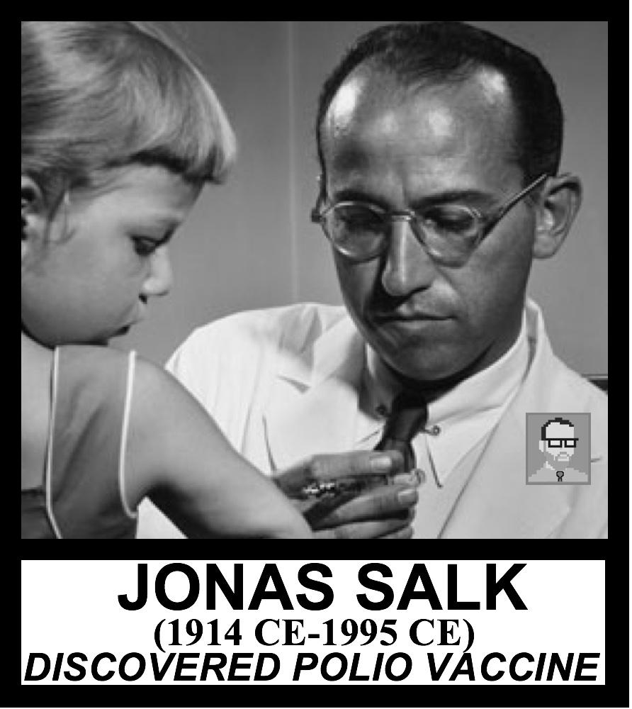 JONAS SALK AP WORLD HISTORY FREEMANPEDIA.jpeg