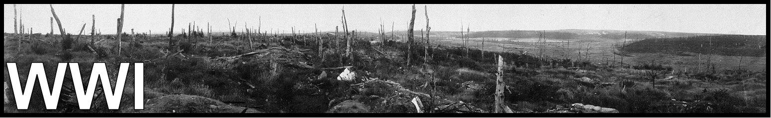 WWI BANNER FREEMANPEDIA WORLD HISTORY II.JPG