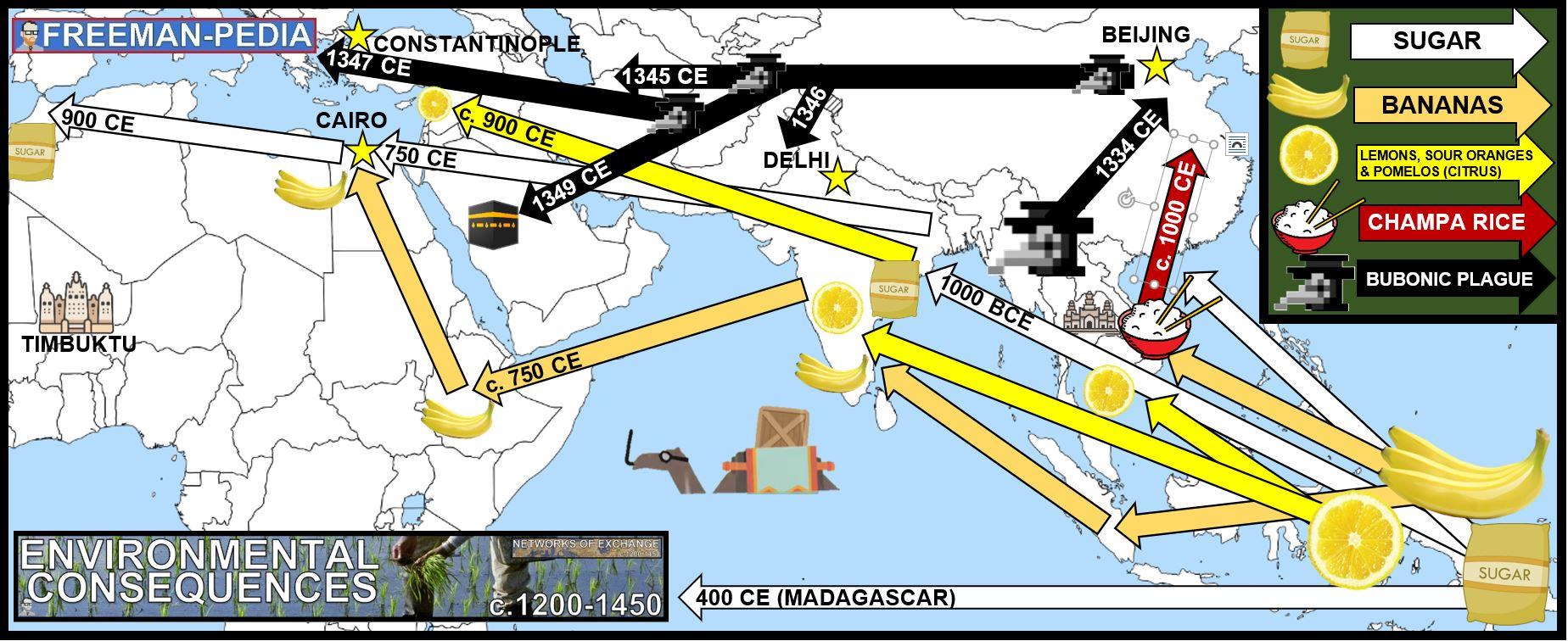 ENVIRONMENTAL CONSEQUENCES MAP NETWORKS OF EXCHANGE AP WORLD HISTORY FREEMANPEDIA MODERN.JPG