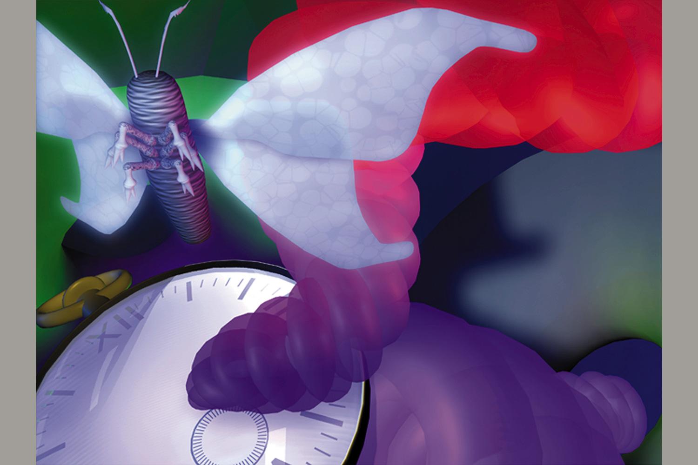Ed's White Moth