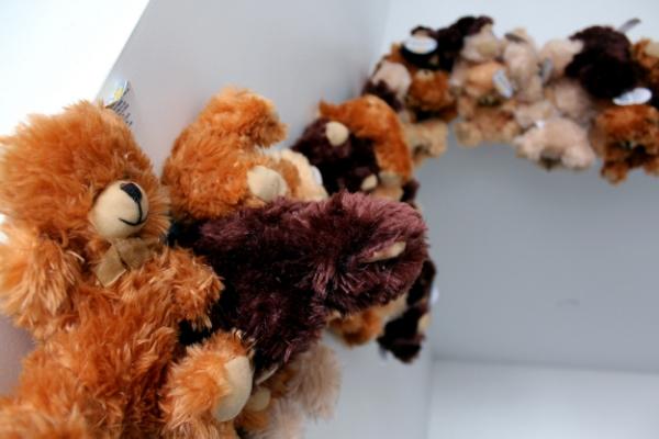 Teddy_4.jpg