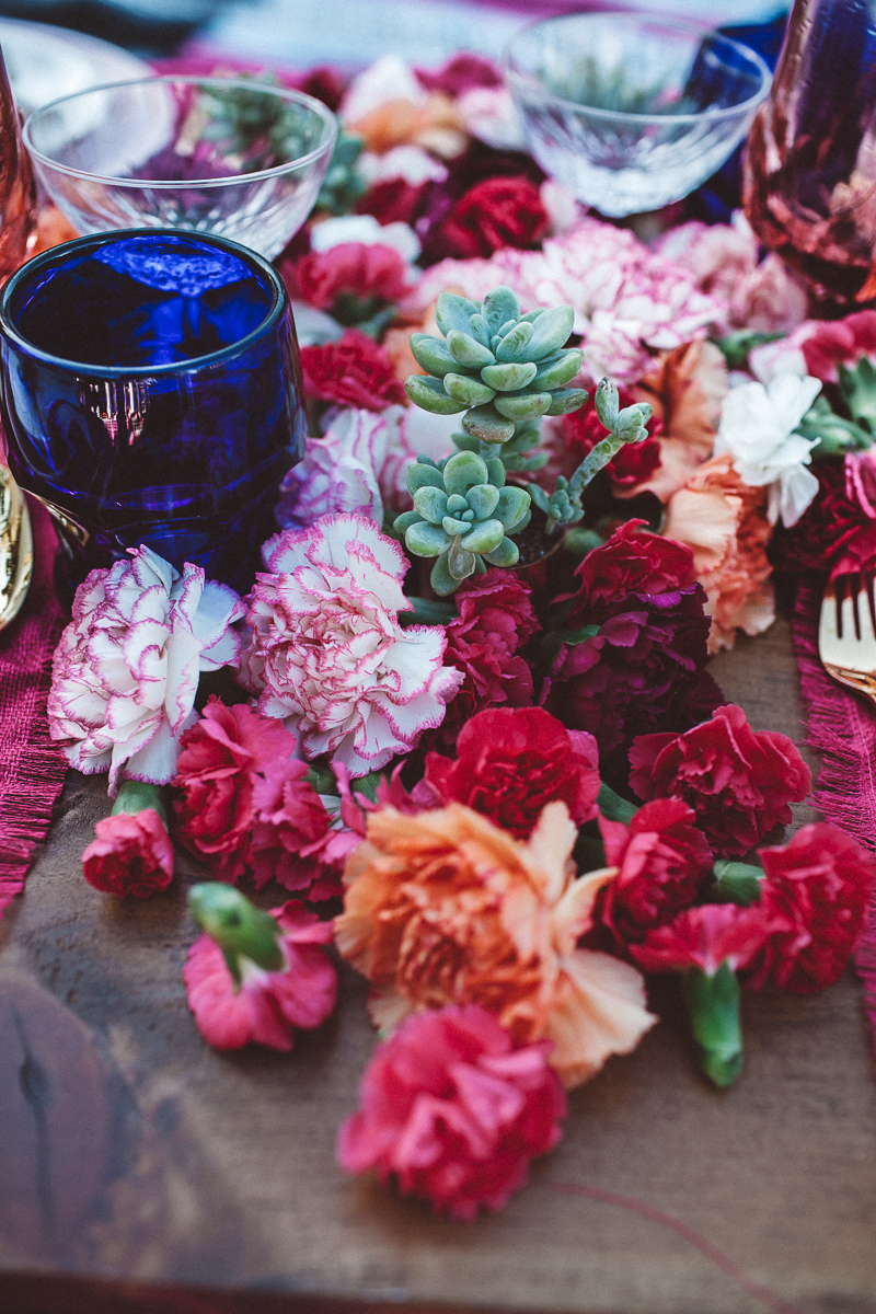 Carnation fiesta