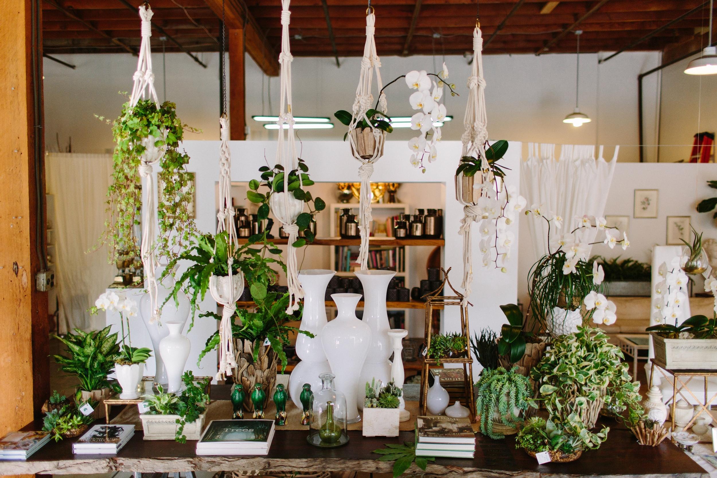 Isari Flower Studio
