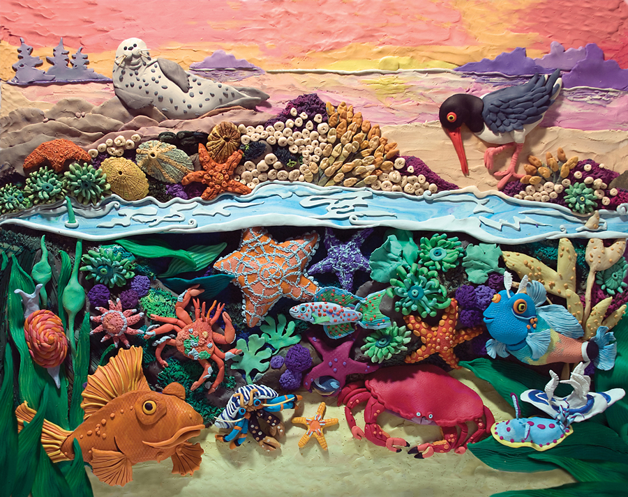 Who lives in the Tide pool?  Won SCBWI Magazine Merit Award