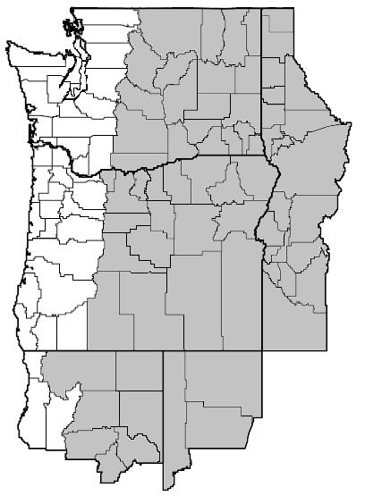 Lupinus caudatus (Tailcup lupine) map.png