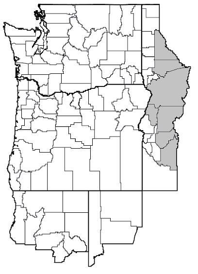Ratibida columnifera var. pulcherrima (Red Mexican hat) map.png