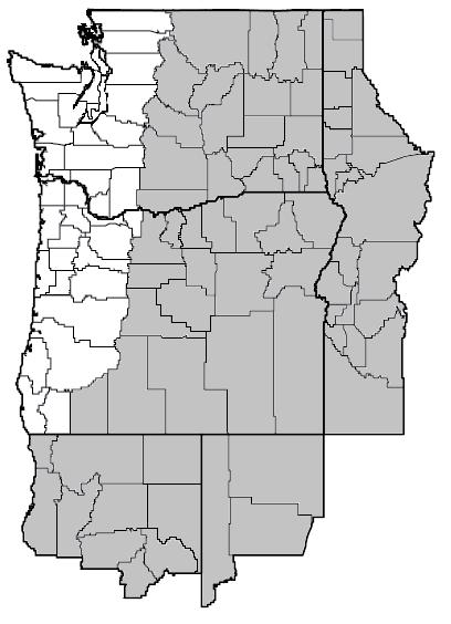Crepis acuminata (Tapertip hawksbeard) map.png