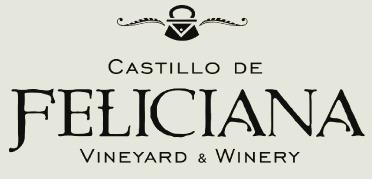 Castillo logo edited.jpg
