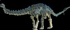 Source  MCDinosaurhunter