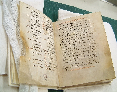 The Apicius manuscript