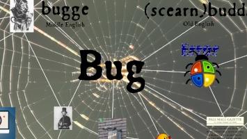 bug thumb.jpg