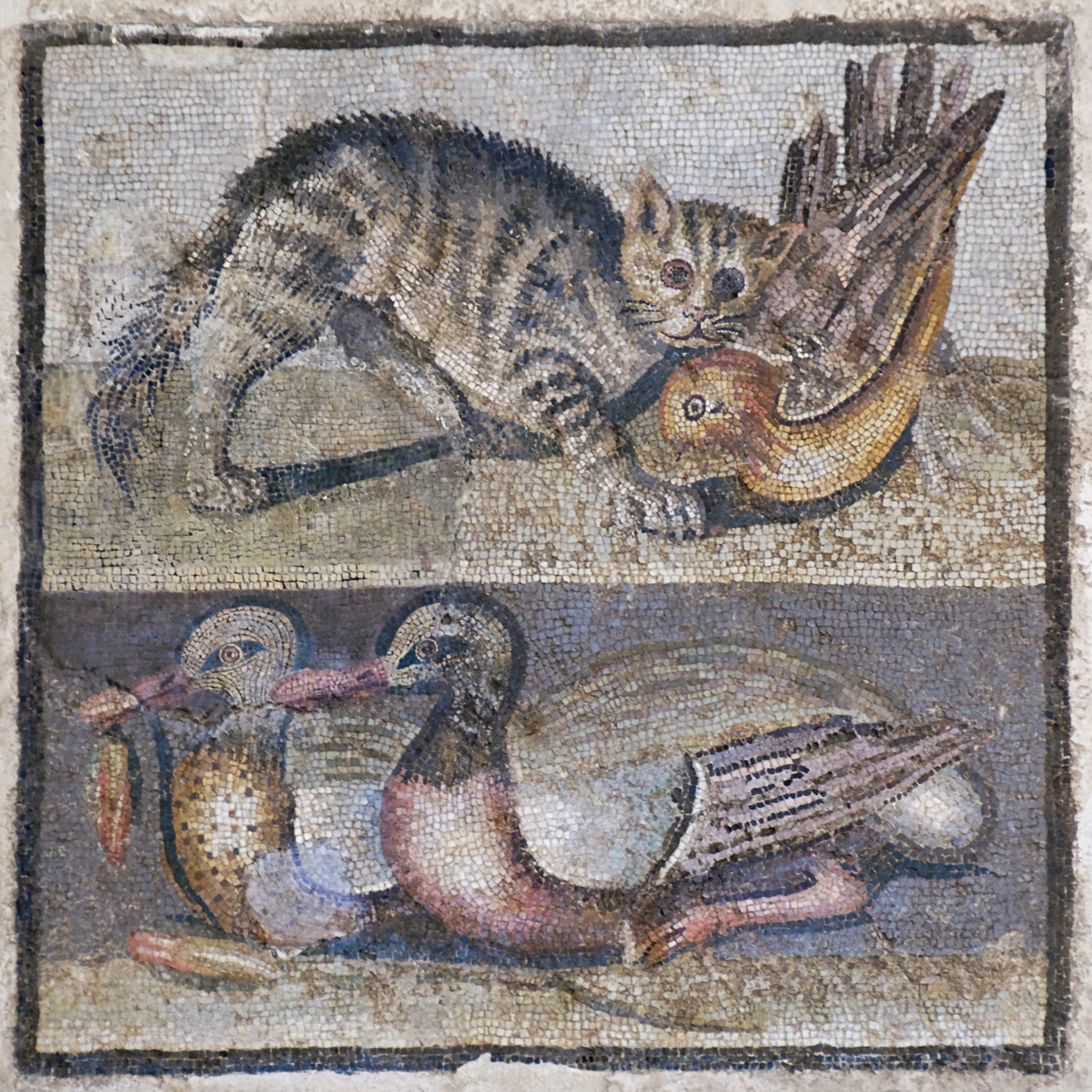 Mosaic_cat_ducks_Massimo_Inv124137.jpg
